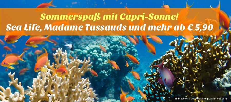 Reisehugode Sommerspaß Mit Capri Sonne Sea Life Madame Tussauds