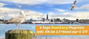 Hamburg Skyline - Landungsbrücken - mit Möwe im Vordergrund