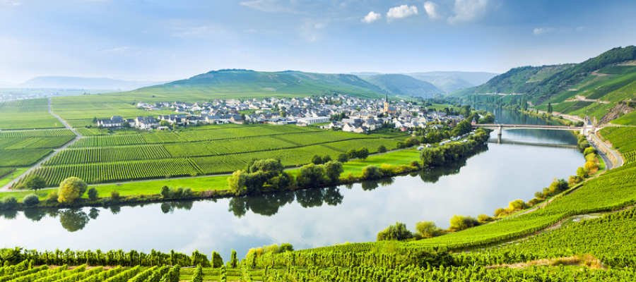 famous Moselle Sinuosity in Trittenheim, germany