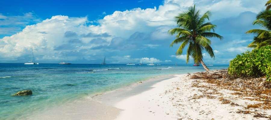 Tropical Island Zelt 4 Personen : Reisehugo tropical islands tage inkl eintritt und