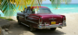 Condor im März: Kuba, Malediven, Dom. Republik ab 259,99 €