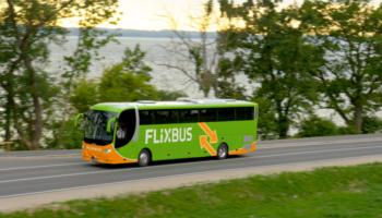 FlixBus Aktion! FlixDeal – Nur 14,99 € pro Fahrt, egal wohin
