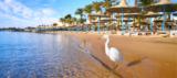 Hurghada im 5-Sterne Steigenberger, AI Plus, Flüge nur 420 €