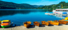 Schwarzwald – 8 Tage im 4-Sterne-Superior-Hotel inkl. Halbpension nur 550 €